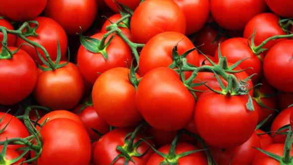 Сорт томатов Верлиока