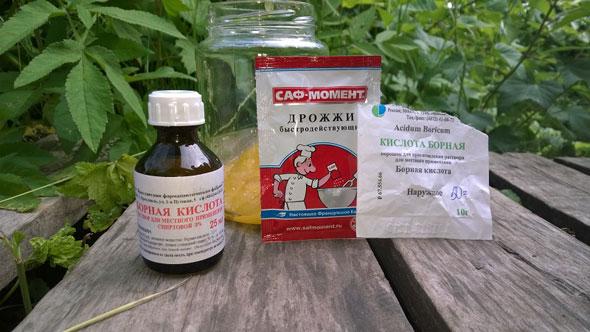 Борная кислота для огурцов