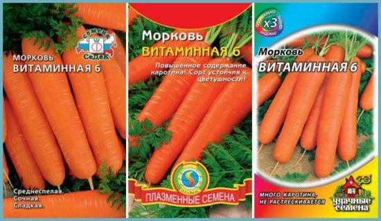 посадка моркови