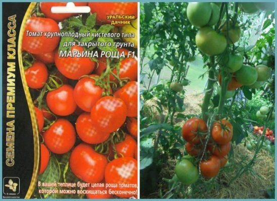 как посадить томаты