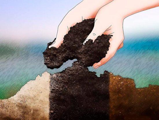 кислотность почвы для клубники