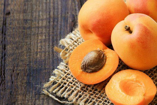 как прорастить косточку абрикоса
