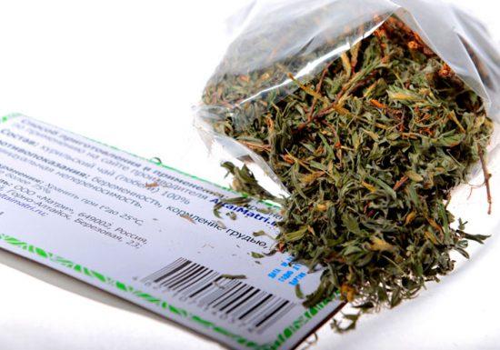 курильский чай полезные свойства и противопоказания