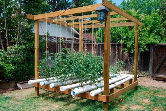 оборудования для выращивания зелени