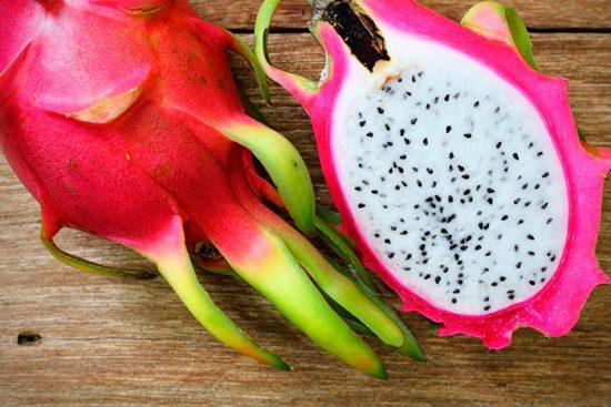 питахайя выращивание в домашних условиях
