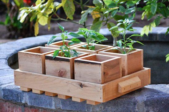 посадка растений на даче