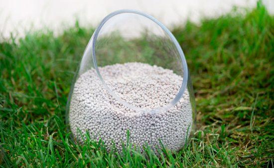 фосфорная подкормка для садовых растений
