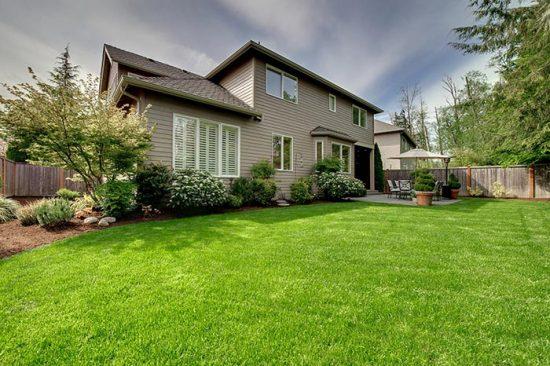 газон возле дома