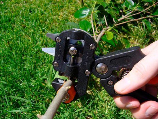 инструмент садовода