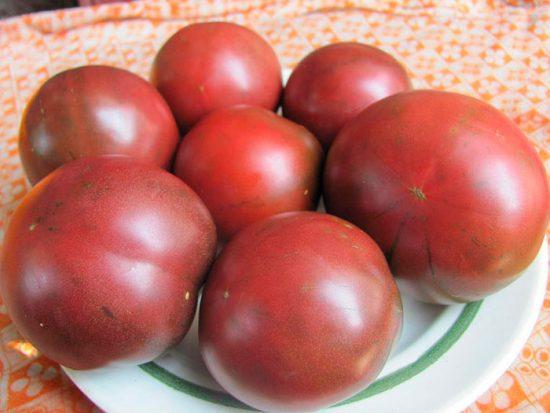 крупный сорт томатов