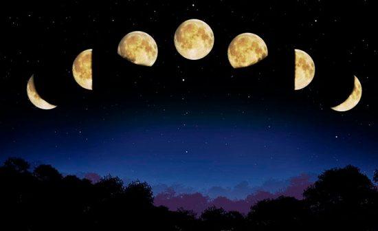 лунный календарь посадок