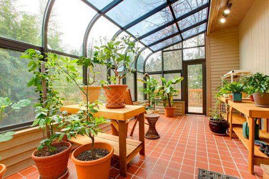 комната для выращивания цветов