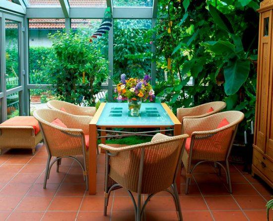 тропический сад в доме