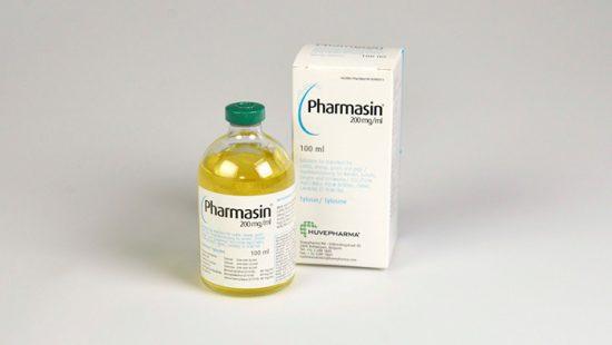 лечение простуды у животных