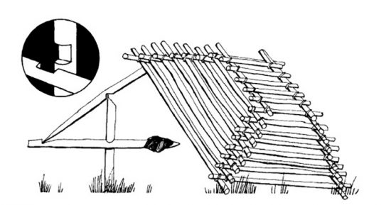 капкан для ловли птиц