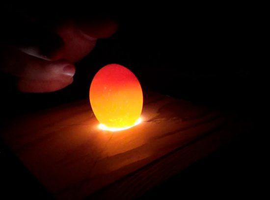 просвечивание яйца