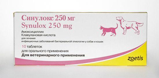 антибиотик для домашних животных