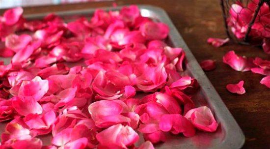 заготовка лепестков розы
