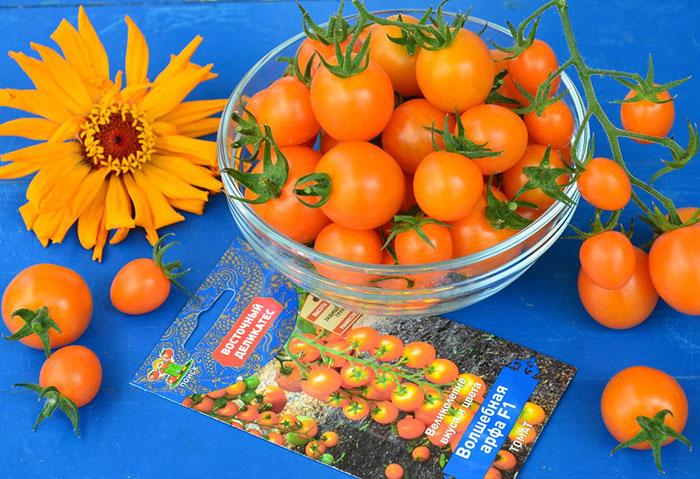 томаты с оранжевыми плодами