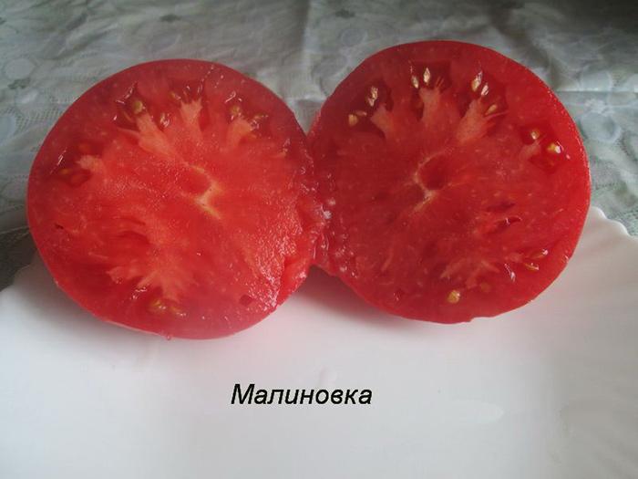 розовый помидор