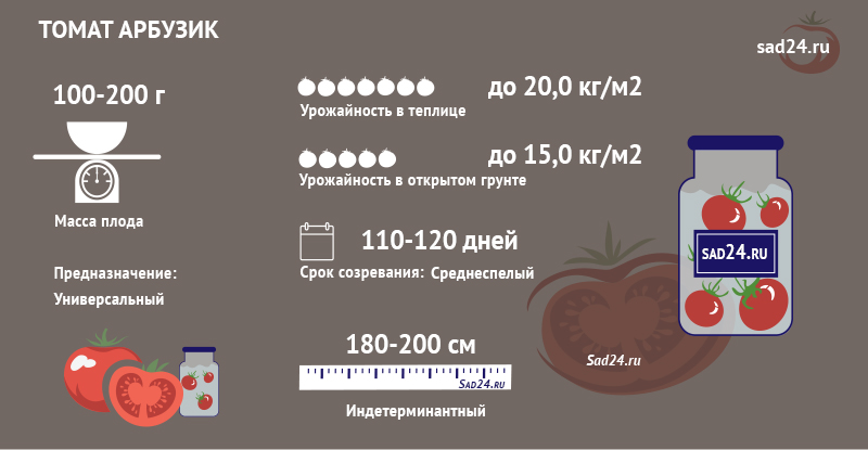 сорт арбузик