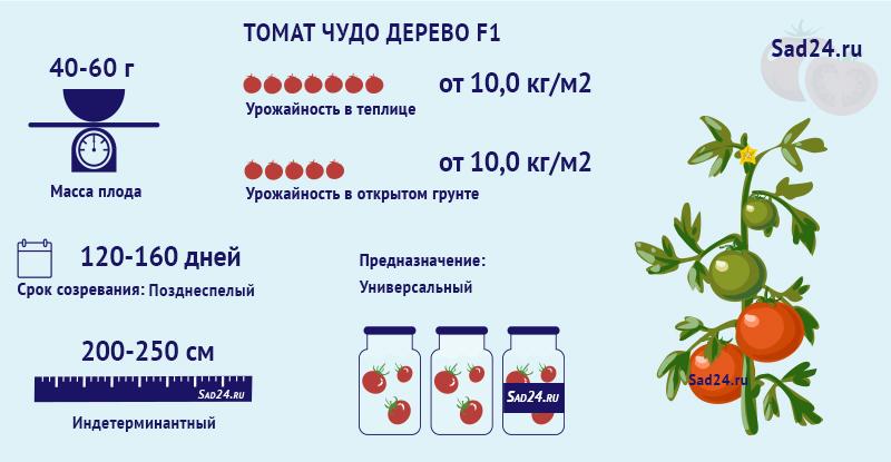Чудо дерево F1 - https://sad24.ru