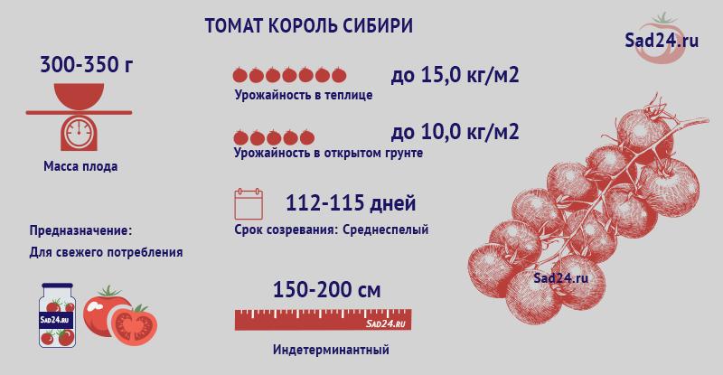 Король Сибири - https://sad24.ru