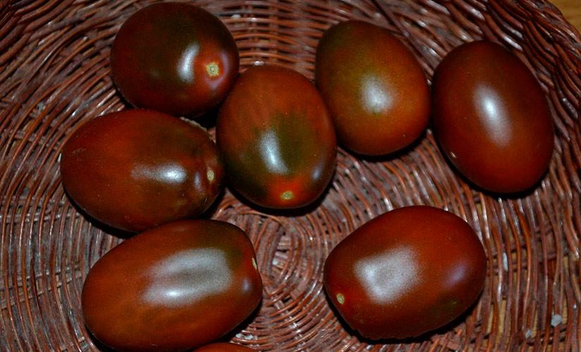 Характеристики и описания сортов томатов Монисто