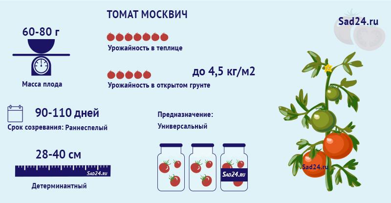 Москвич - https://sad24.ru