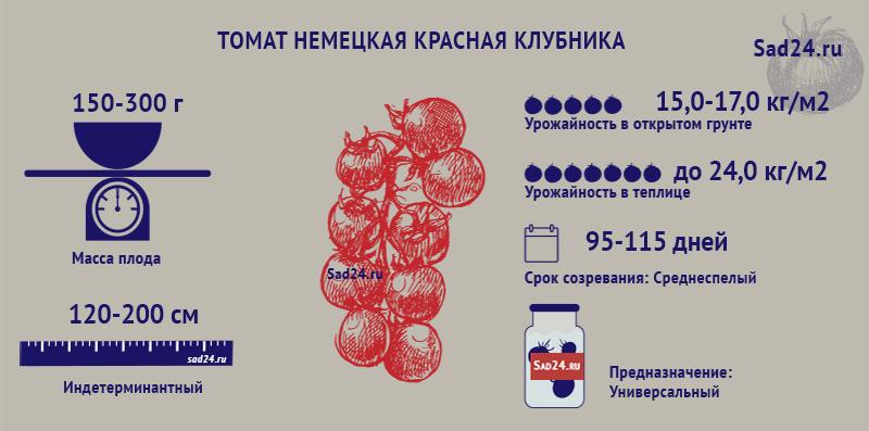 Немецкая красная клубника - https://sad24.ru
