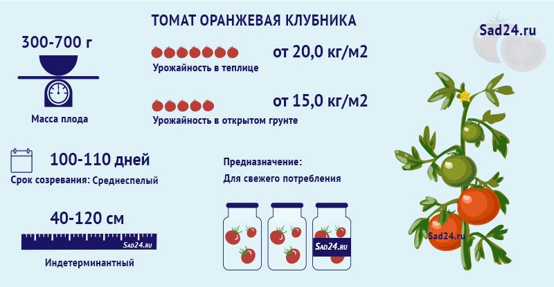 Оранжевая клубника - https://sad24.ru