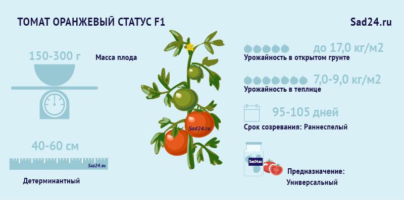 Оранжевый статус - https://sad24.ru