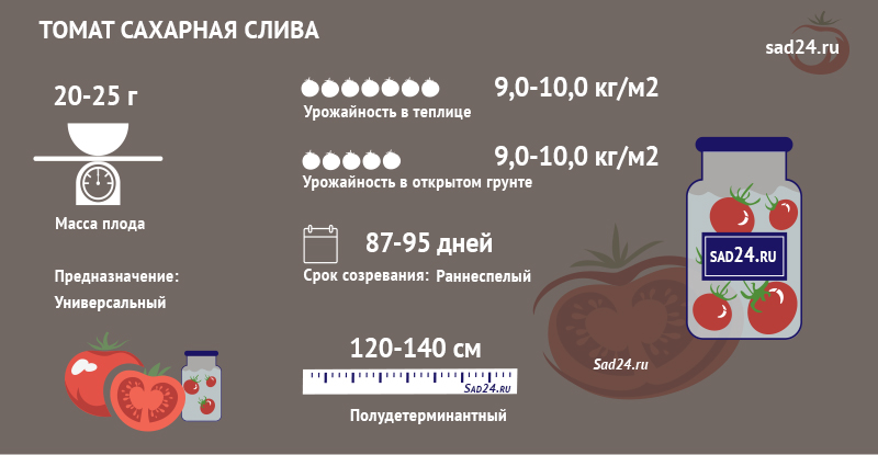 Сахарная слива - https://sad24.ru