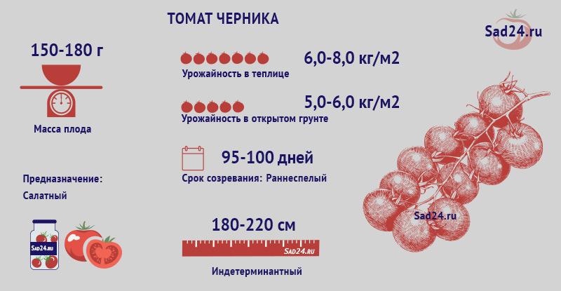 Черника - https://sad24.ru