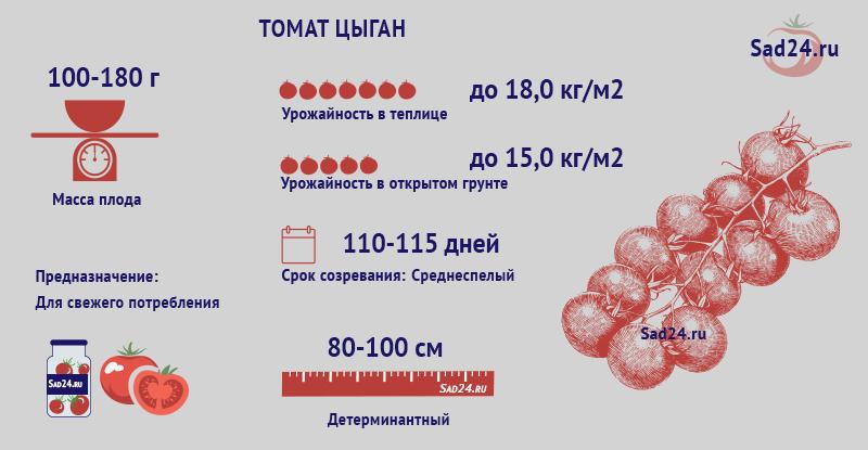 Цыган - https://sad24.ru