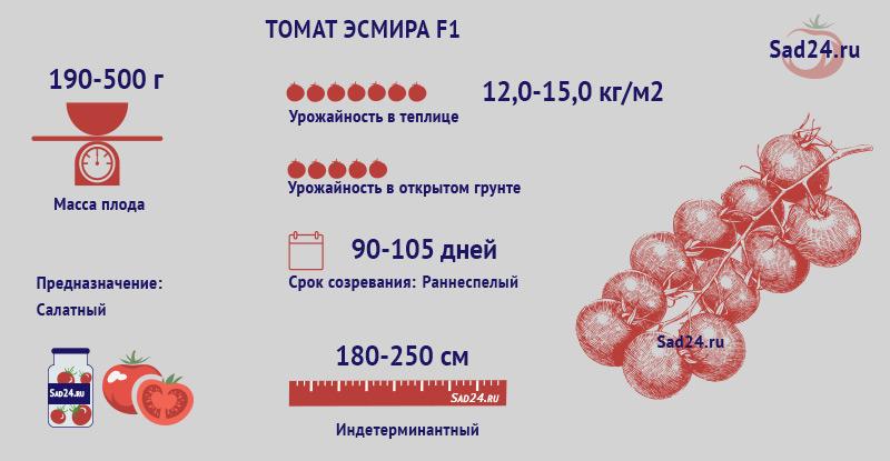 Эсмира F1 - https://sad24.ru