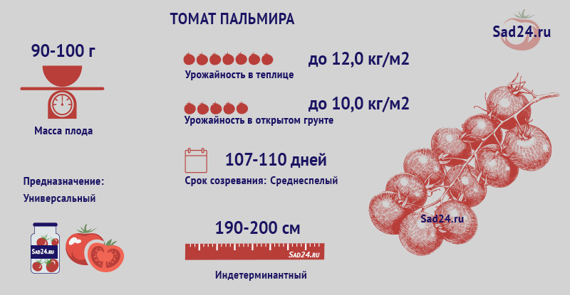 Пальмира - https://sad24.ru