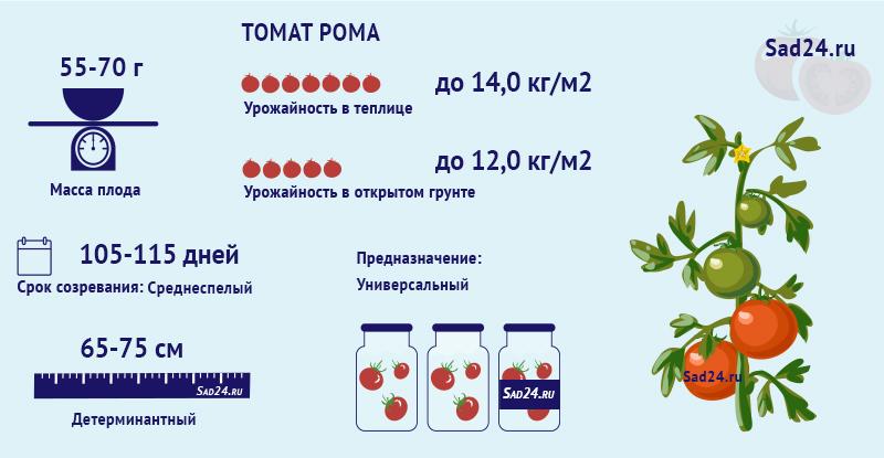Рома - https://sad24.ru