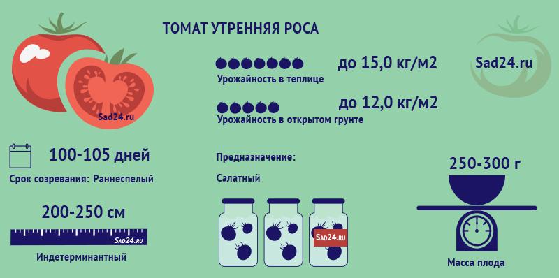 Утренняя роса - https://sad24.ru