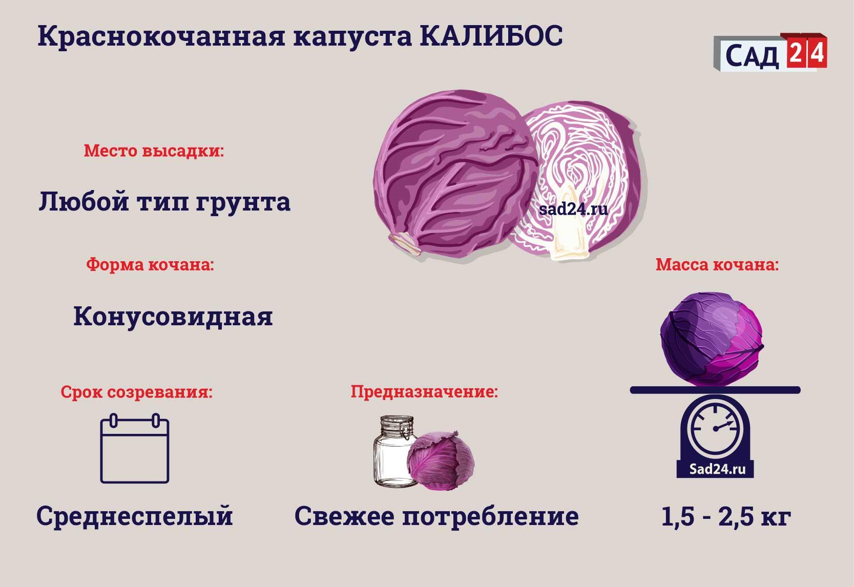 Калибос - https://sad24.ru