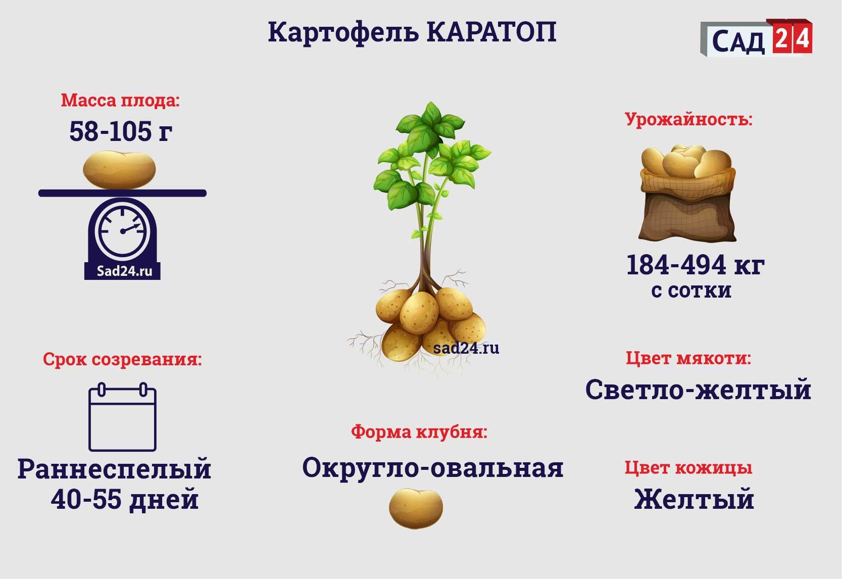 Каратоп - https://sad24.ru
