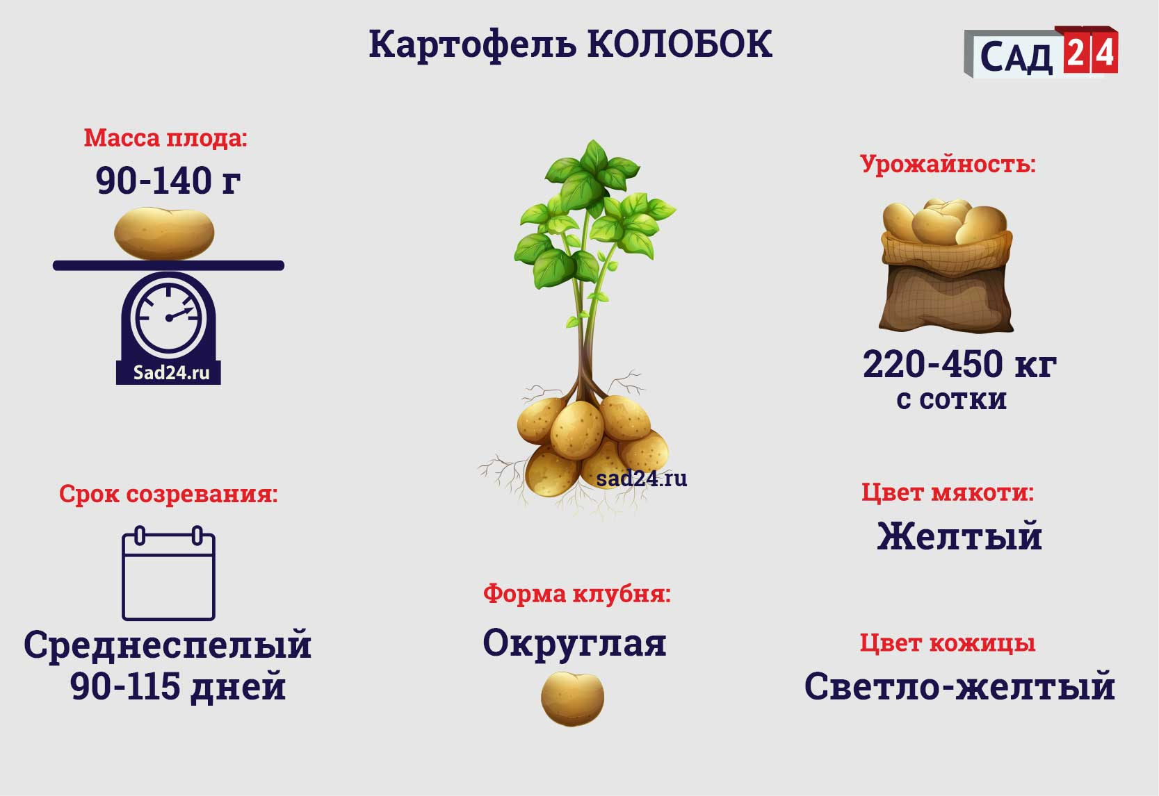 Колобок - https://sad24.ru