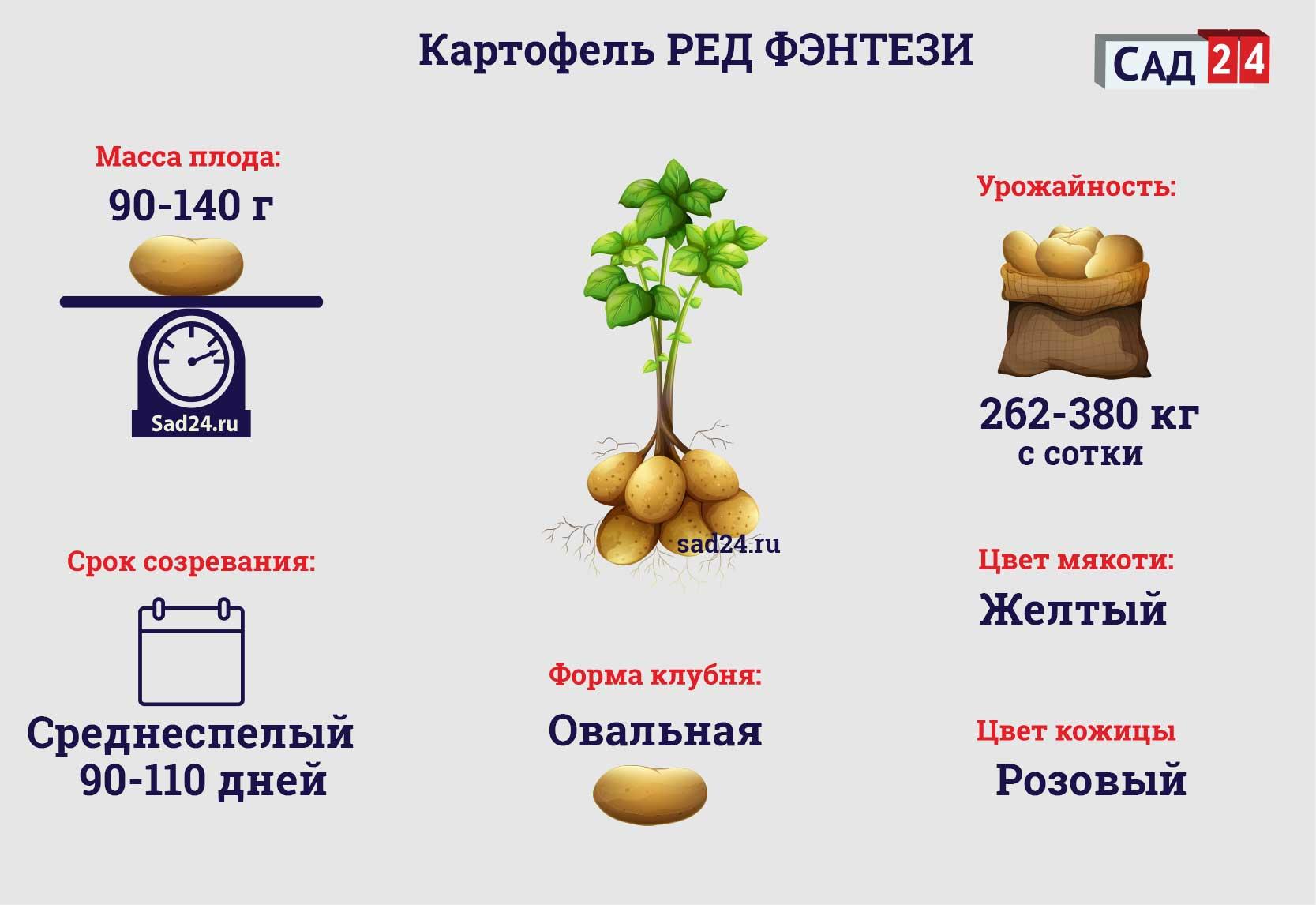 Ред фэнтези - https://sad24.ru