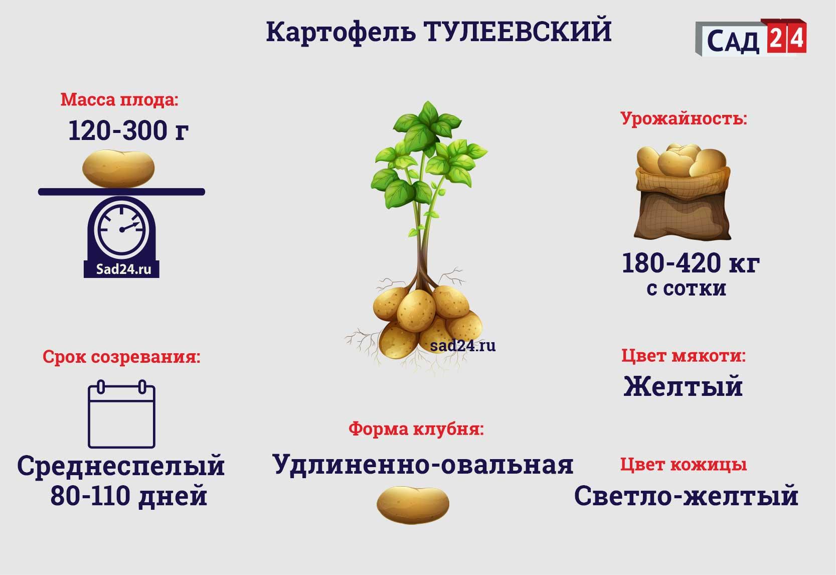 Тулеевский - https://sad24.ru