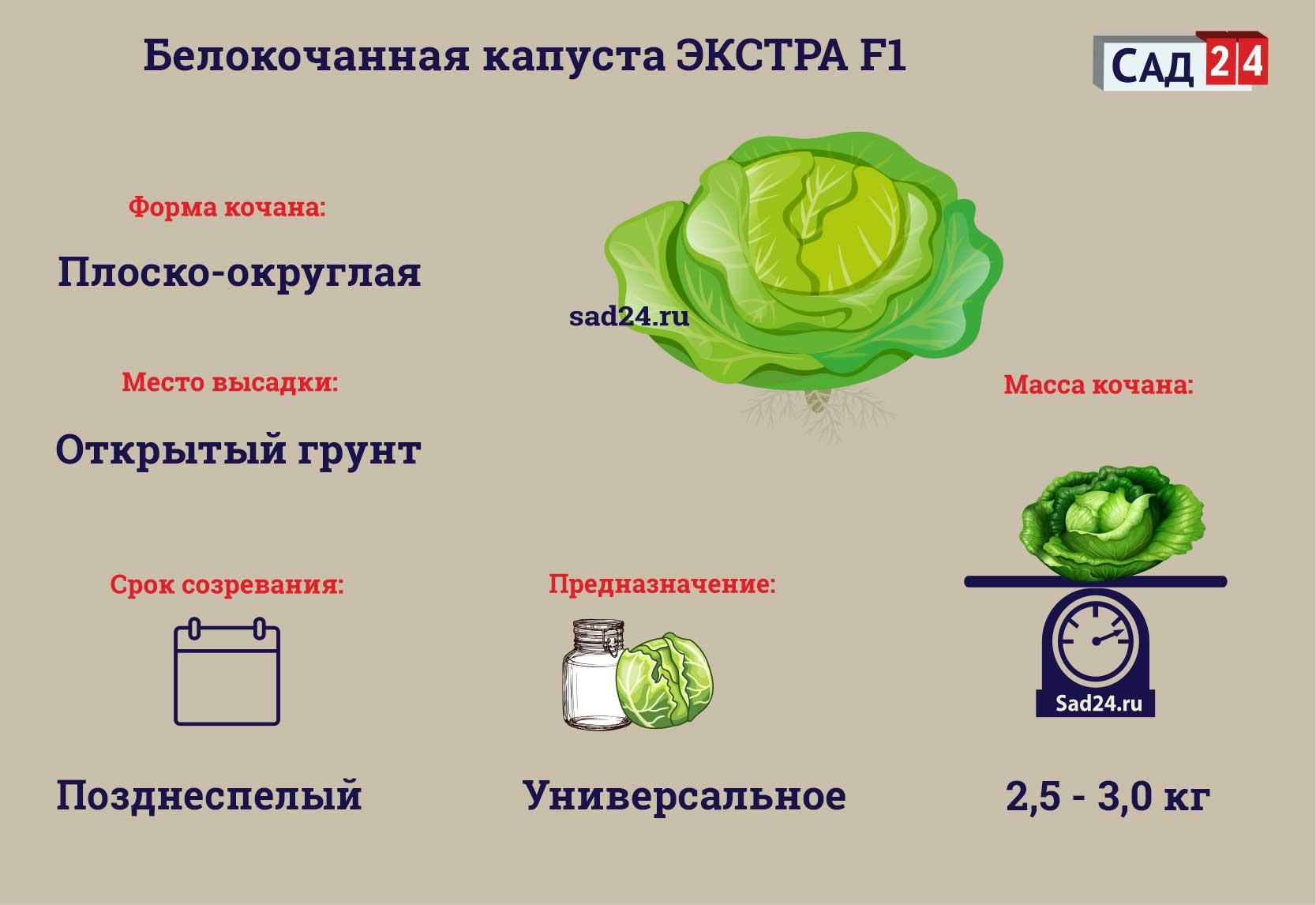Экстра F1 - https://sad24.ru
