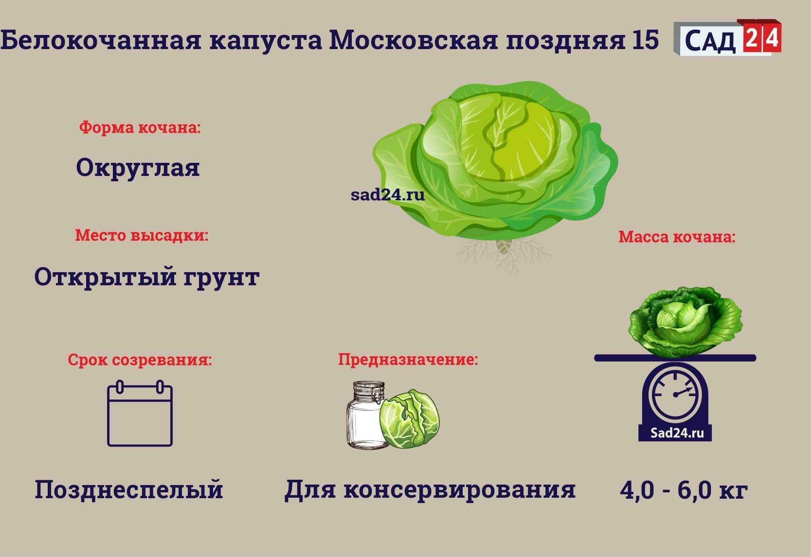 Московская поздняя -https://sad24.ru