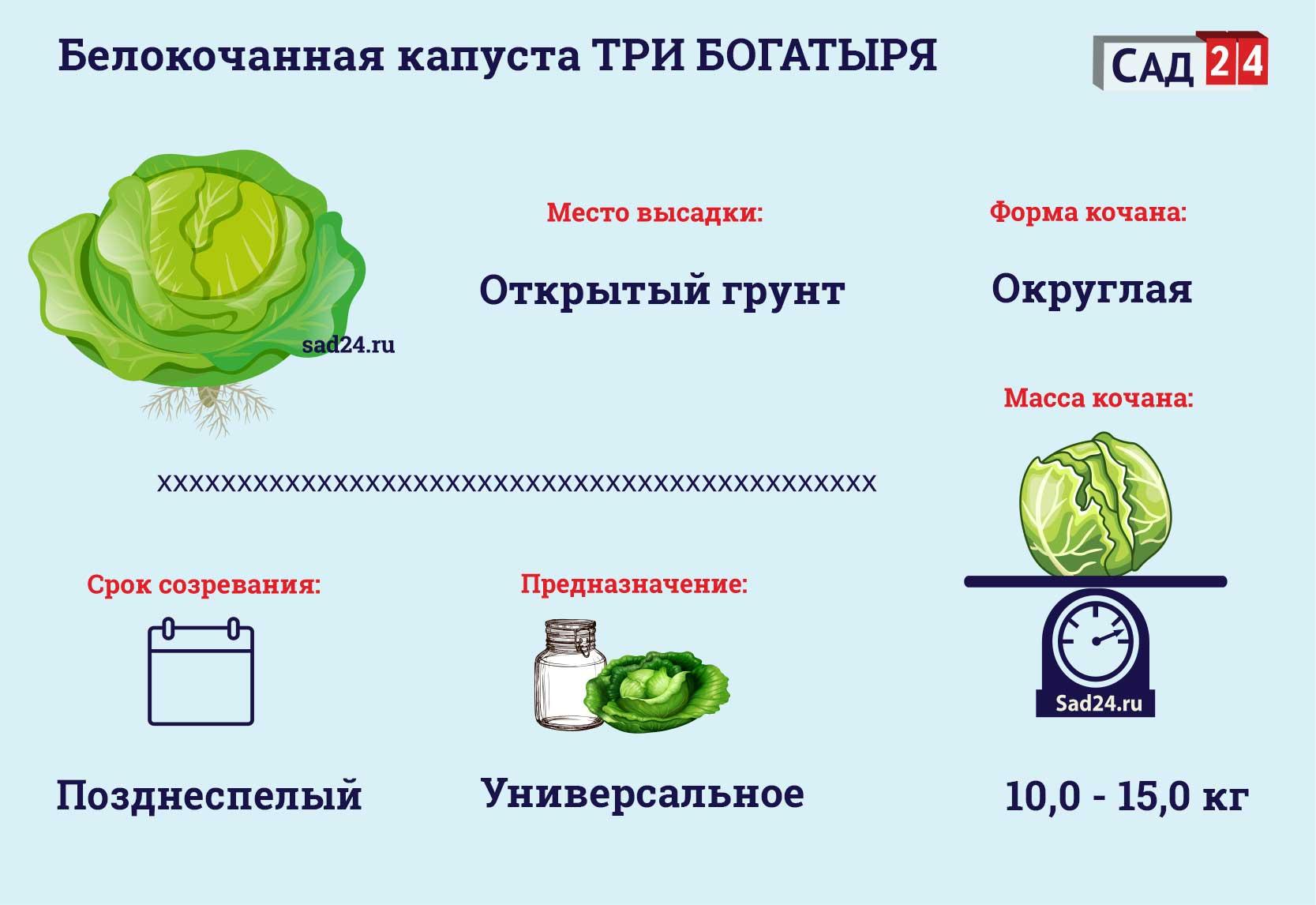 Три богатыря - sad24.ru