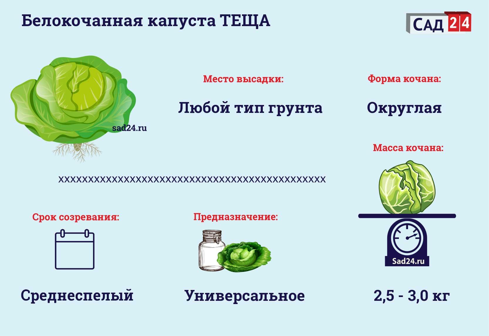 Теща - https://sad24.ru