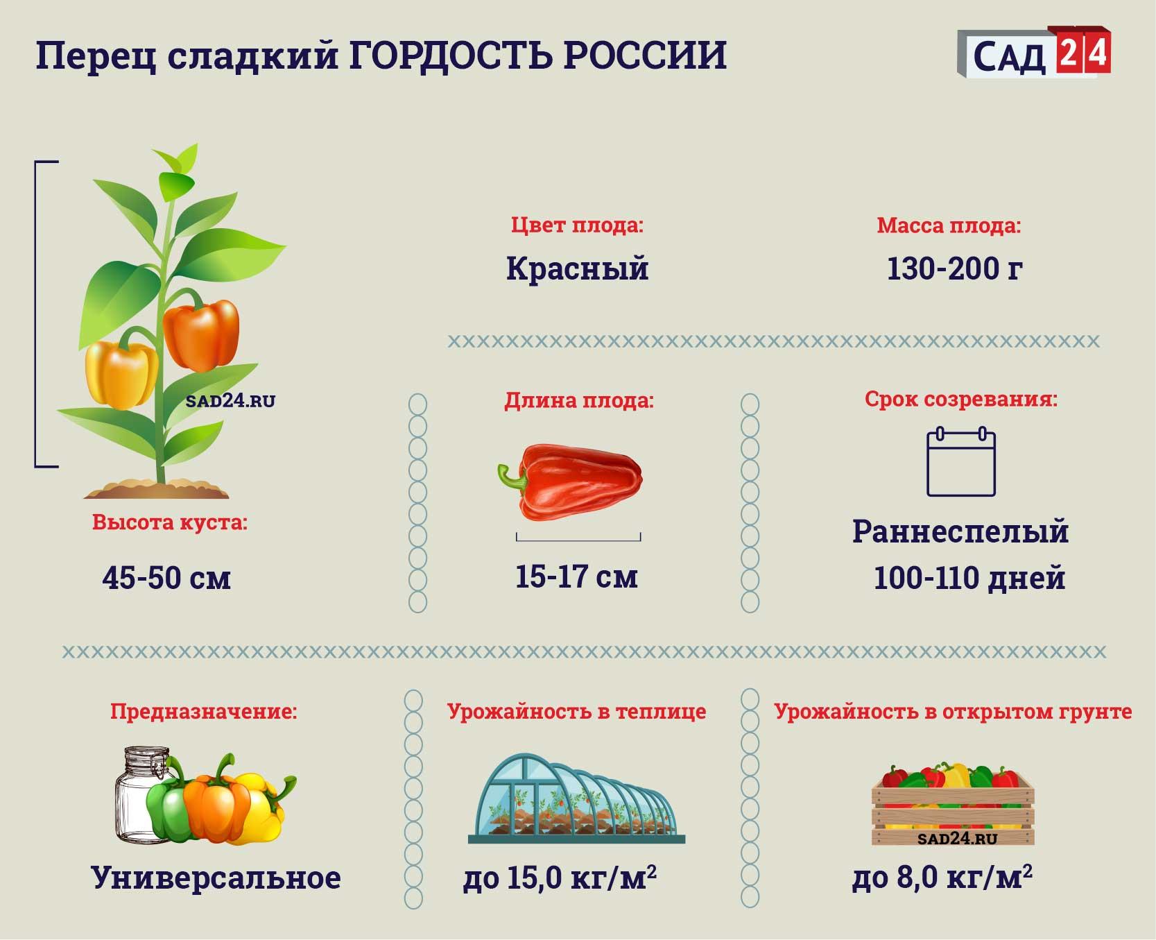 Перец сладкий Гордость России. Описание, негативные и позитивные качества, правила выращивания - наш ответ
