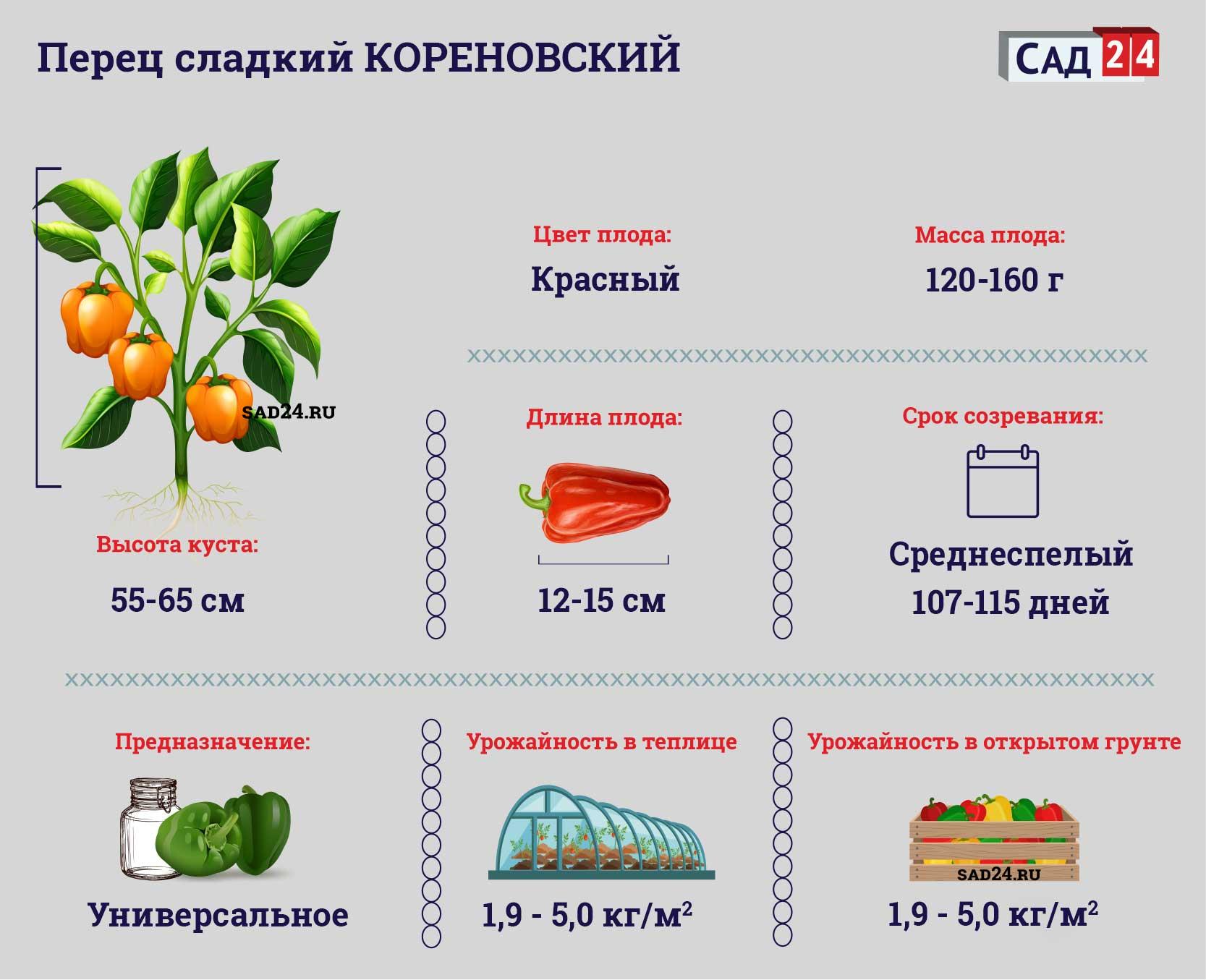 Кореновский - https://sad24.ru/